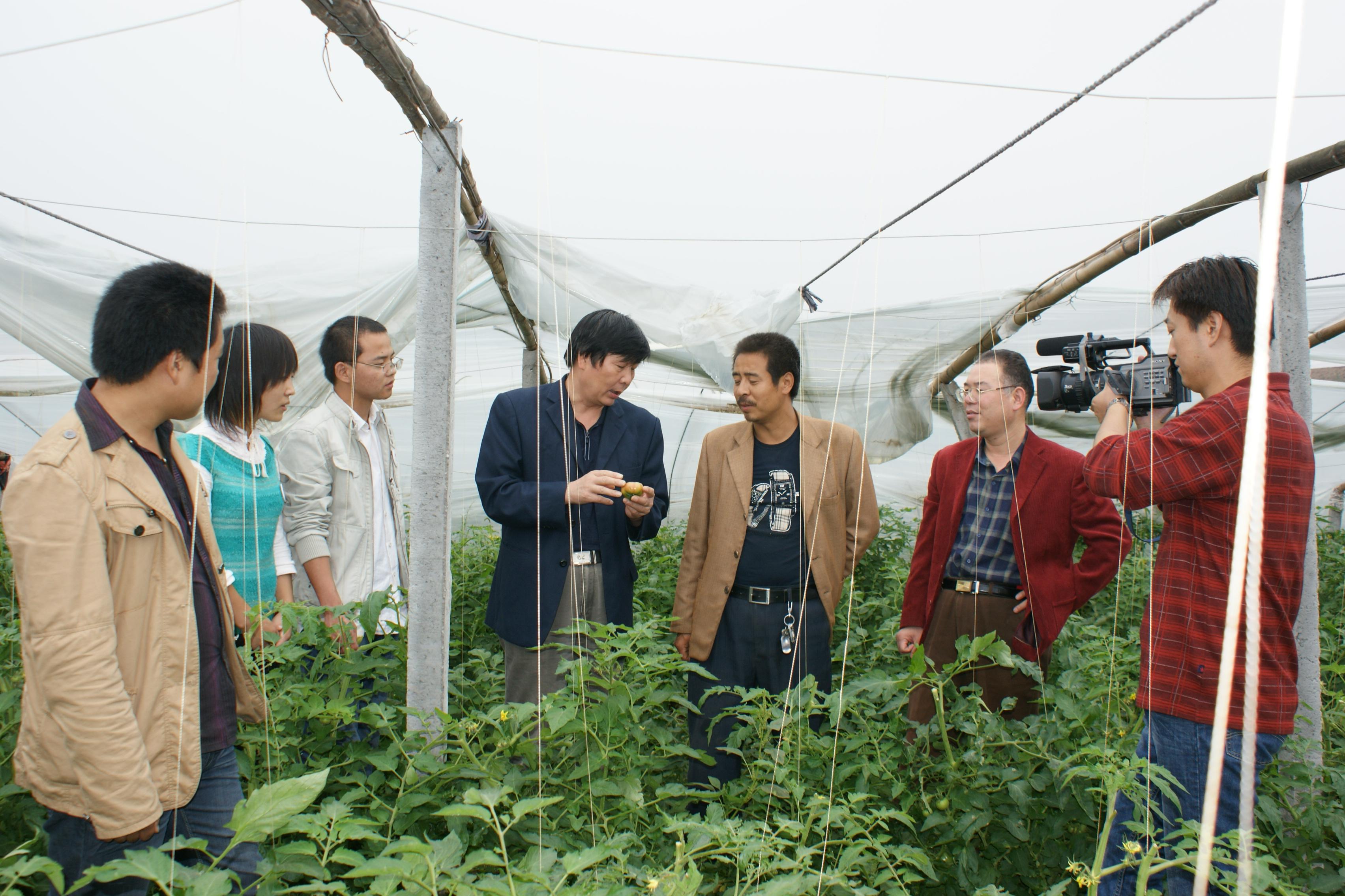 陕西省电视台采访我校sife大学生社团图片